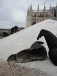 Sale, cavalli feriti e Duomo