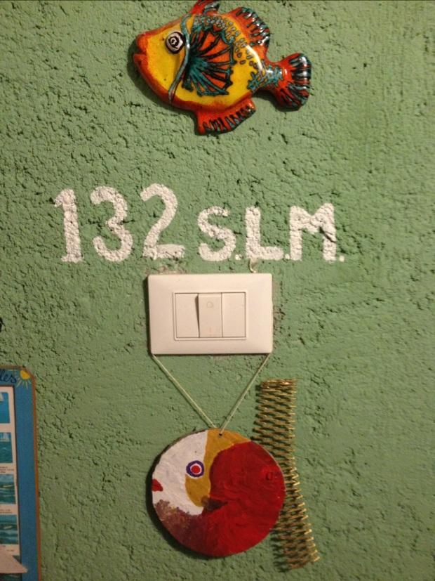 20120803-194828.jpg
