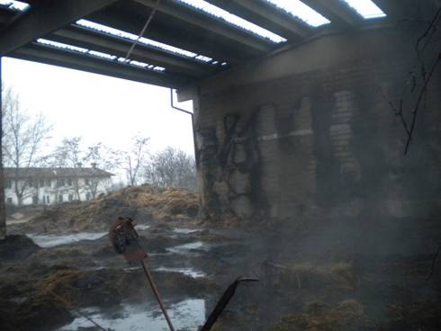 Incendio Wwf